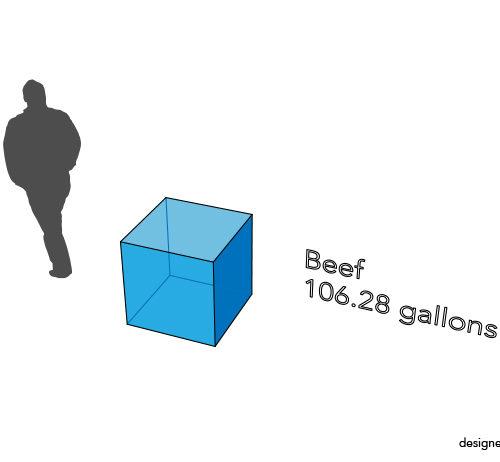 Beef Water Footprint